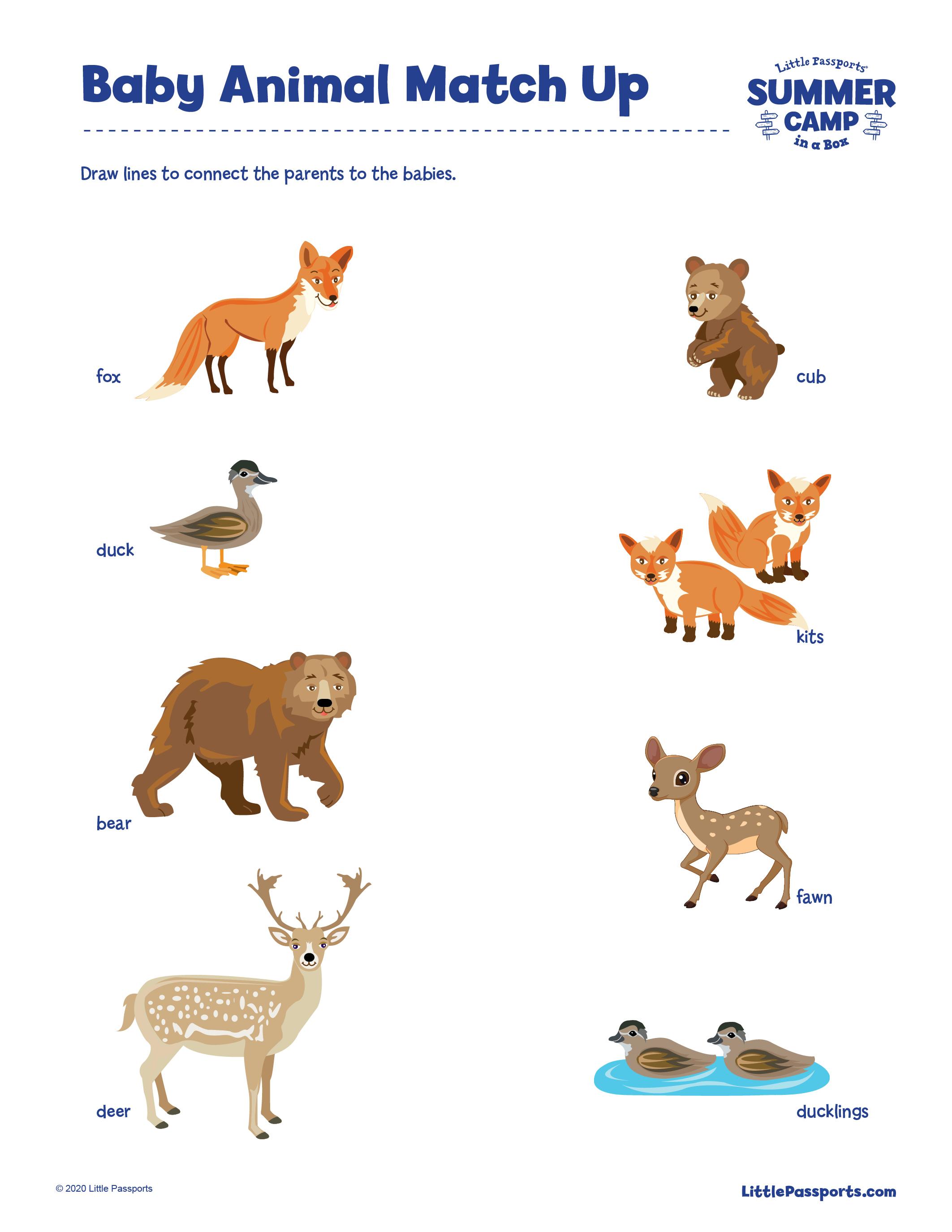 Printable Baby Animal Match Up