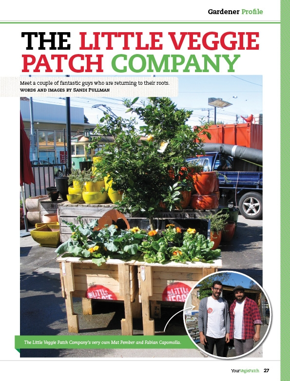 Your Vegie Patch Magazine  Erin Farrugia Portfolio  The Loop
