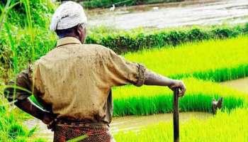समन्वित खेती बन रहा छोटे किसानों के लिए वरदान