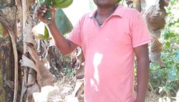 केले की ऐसी खेती कि औरों के लिए मिशाल बन गया ये किसान