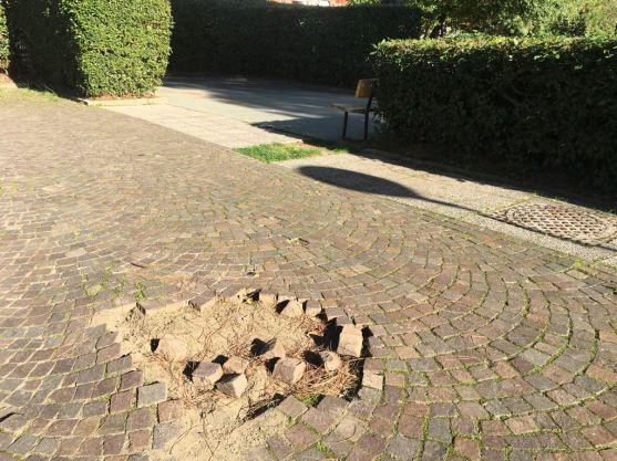 giardini villa san lorenzo 78