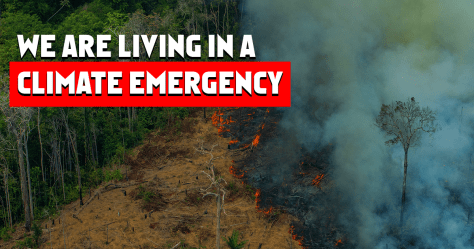 Climate Emergency - Greenpeace International