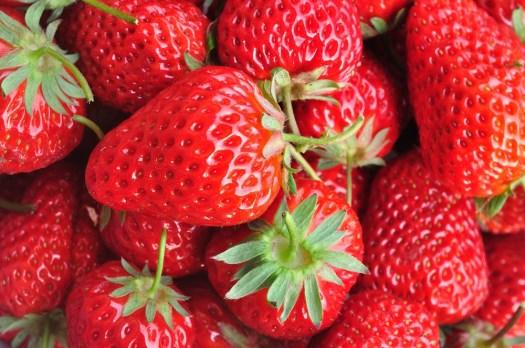 Frutillas: Identifican condiciones óptimas de almacenamiento para ...