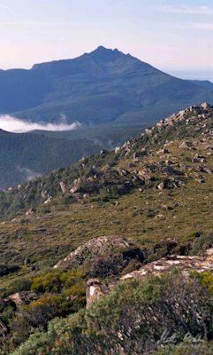 Pindars Peak. Photo by Matthew Brain