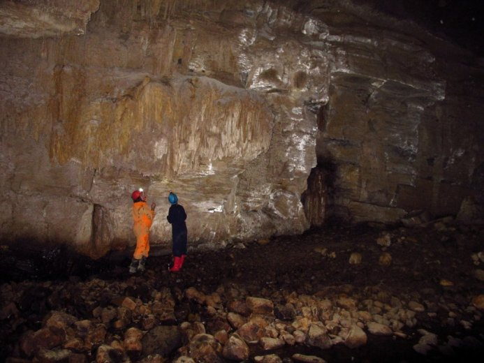 A biospeleological expedition in Southern Tasmania