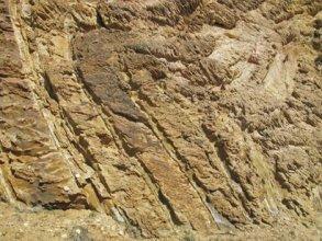 Recumbent fold in the Matthinna Supergroup at Tullochgorum near Fingal.