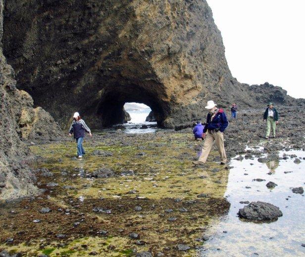 Sea Arch in Tertiary flow foot breccias at Cape Grim
