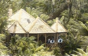 Clematis Hut - image sourced via The Romance of Mount Wellington by John and Maria Grist