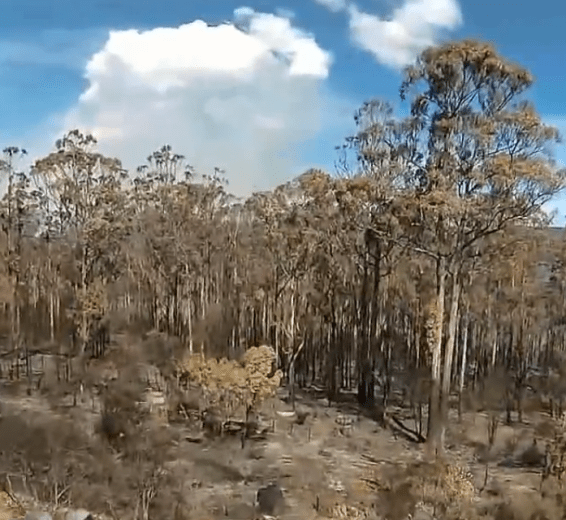 A Quadcopter View of the Jan-13 Tasmanian Fires-by Rian Taylor-42