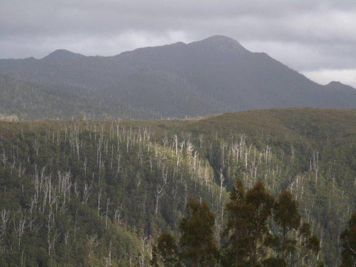 The Tasmanian West Coast 02