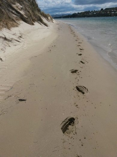 Footprints make clumsy marks that will be gone with the rising tide - At Five Mile Beach
