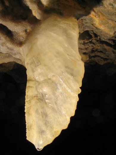 Cliefden Caves - The Angel Wing - by Gary Whitby