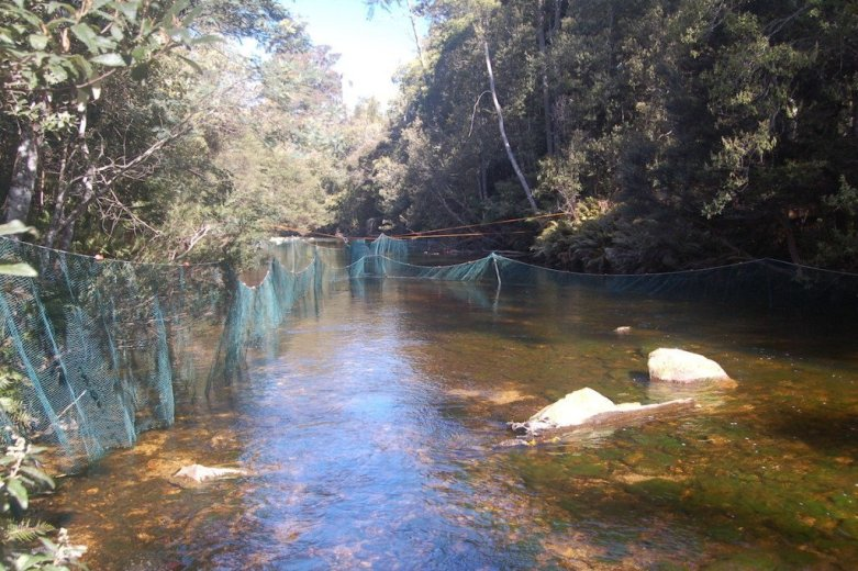 Mapping the Platypus Century - Upper Esk- by  Josh Griffith