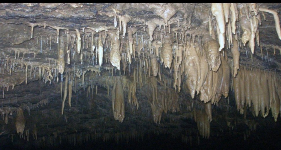 Cave Diving - For Your Eyes Only - by Janine McKinnon_23