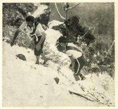 Go-As-You-Please Mountain Race 1903 - via Maria Grist - 012