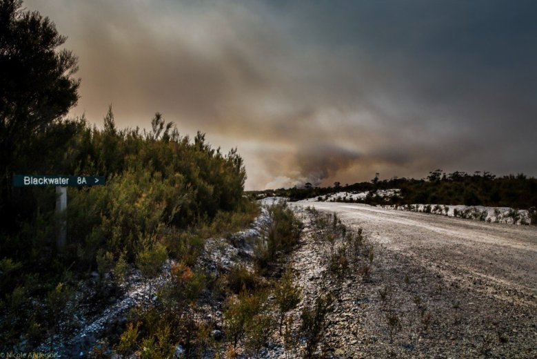 The Wuthering Heights fire from Blackwater Rd - 25th Jan 2016- by Nicole Anderson.jpg