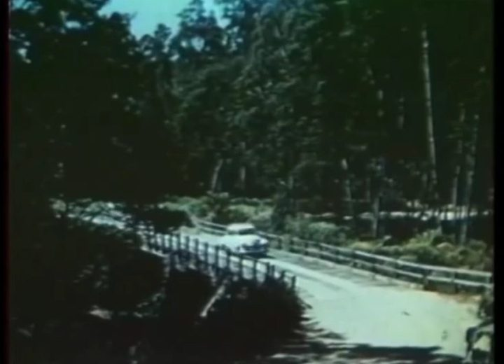 Gateway to Charm (1955 Northwest Tasmanian Tourism) -11