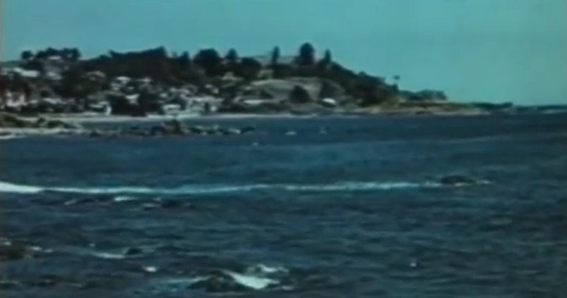 Gateway to Charm (1955 Northwest Tasmanian Tourism) -36