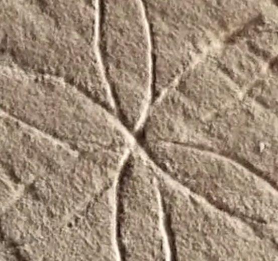 The Tasmanian Magic Project - video screencap 5