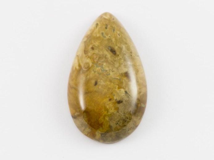 Petrified Wood - Specimens from Tasmania- by Apple Isle Prospector- 4