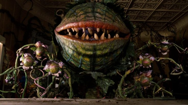 "Audry II from ""Little Shop of Horrors"" in his large for. He takes up the entire room and looks like a venus fly trap with large red lips and thick teeth."