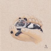 MBandF_HM10_Panda_illustration_1_HRES