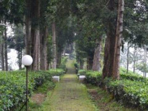 wisata alam puncak bogor kota bogor jawa barat Wisata Taman Riung Gunung Puncak Bogor Yang Wajib Dikunjungi