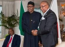 PRESIDENT BUHARI MEETING NIGERIANS IN JAPAN 3
