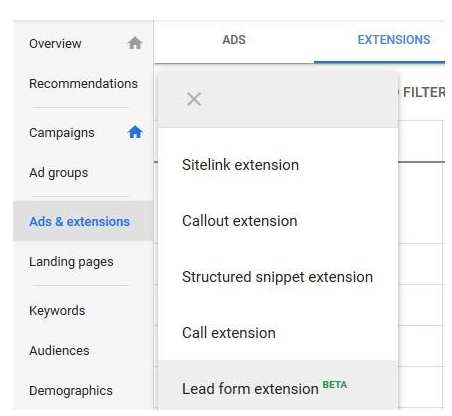 Google lead form extensions selection