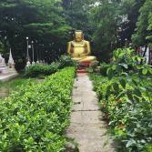 bangkok-tree-house-20160624_049