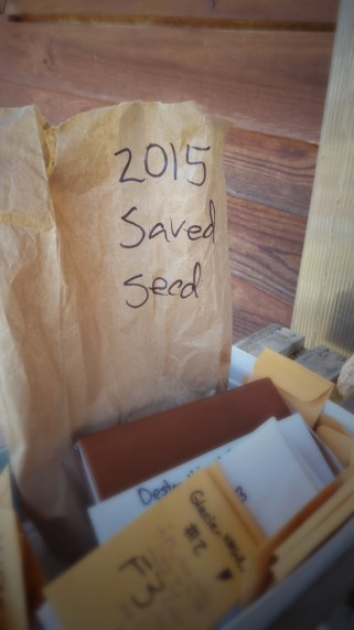 We've saved thousands of seeds from our plants over the years.