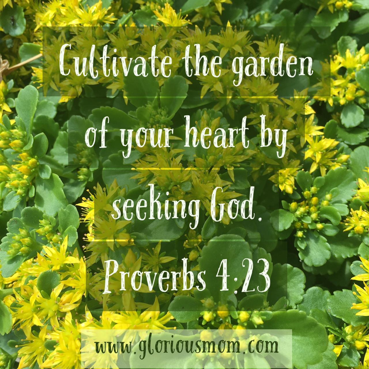 garden of your heart