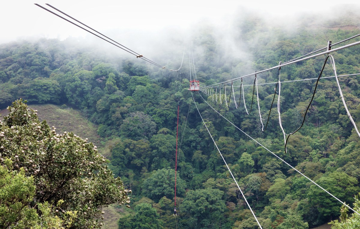 The cables stretched across the valley where the bungee jump takes place