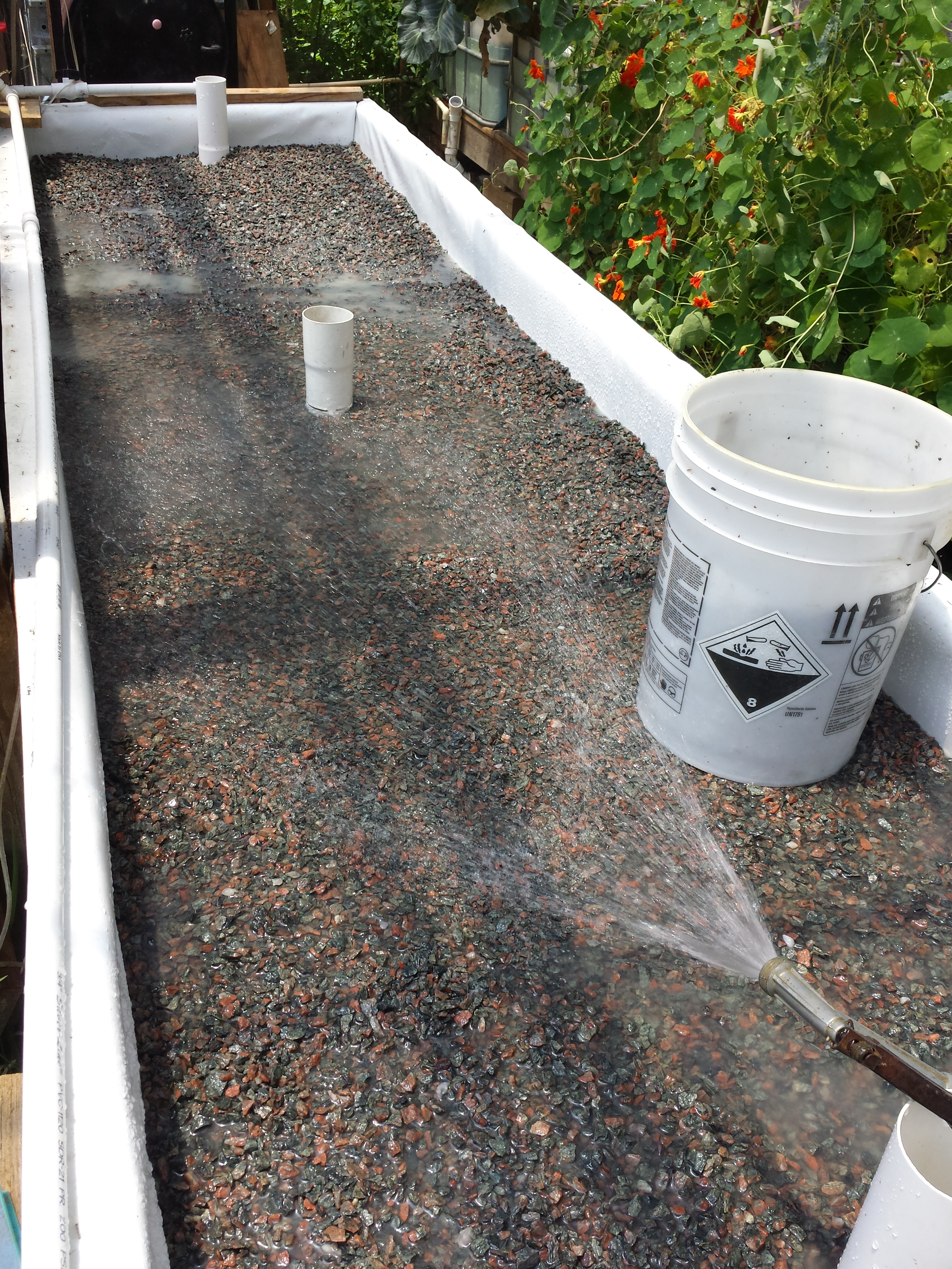 wicking bed growers aquaponic
