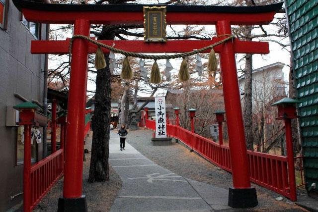 Image result for 富士山旅游