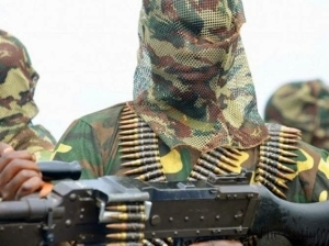 60 women reportedly abducted by Boko Haram in Adamawa state