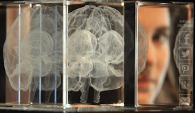 American Scientist Planning to Upload His Own Brain to a Computer
