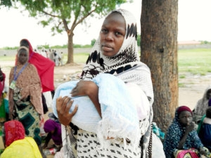 Boko Haram: Displaced Women Deliver Of 5 Babies In 3 Days