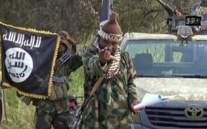Boko Haram Abducts 30 Boys, Girls in Fresh Attack