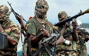 Boko Haram Storms Borno Village With 11 Toyota Hilux & Motorcycles, Kills 13