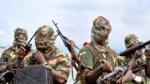 Boko Haram reportedly kills scores of Christians in Adamawa today