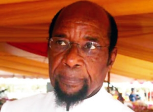 Chukwumerije Was A Pillar Of Taekwondo In Nigeria – Danagogo