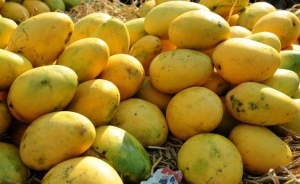 Great Health Benefits Of Mangoes