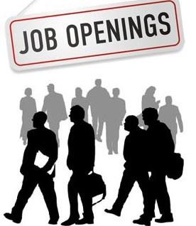 Jonathan working tirelessly to create 1.8 million jobs – Okonjo-Iweala