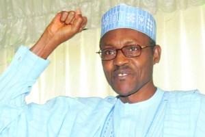 Kashamu congratulates Buhari