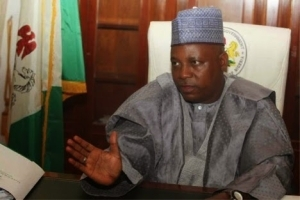 Liberated villages still not safe as Boko Haram members exist there - Gov Shettima