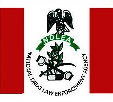 NDLEA Arrests Notorious Drug Baron With Cocaine At Lagos Airport