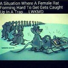 When A Babe Who Forms Alot Get Caught In A Trap, This Is What Happens