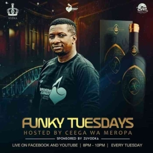 Ceega – Funky Tuesdays Mix (11-May)