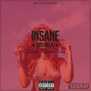 Rihanna – Disturbia (Insane Malwela's Afro House Remix)